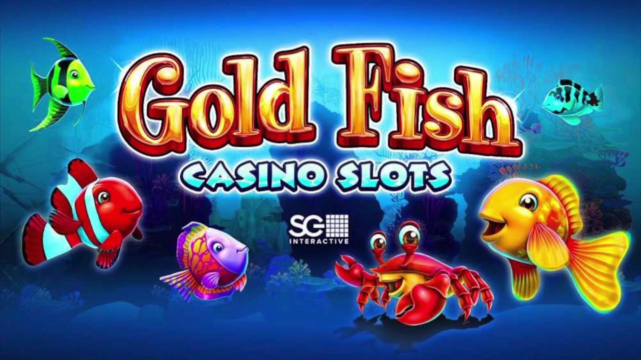 Gold Fish casino slot avis : découvrez cette machine à sous !